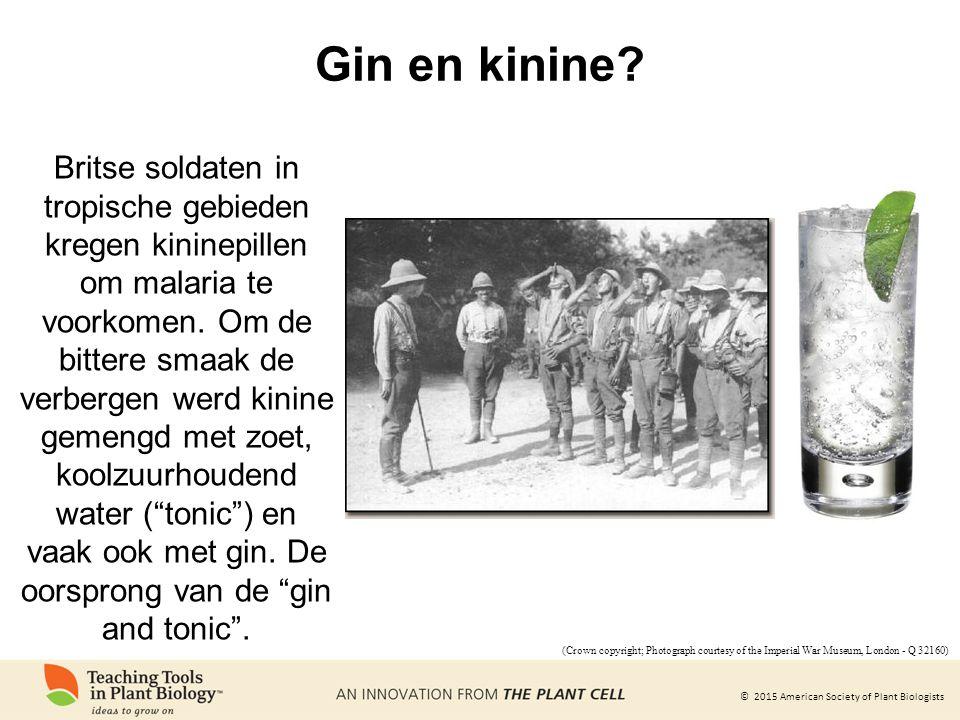 Gin en kinine