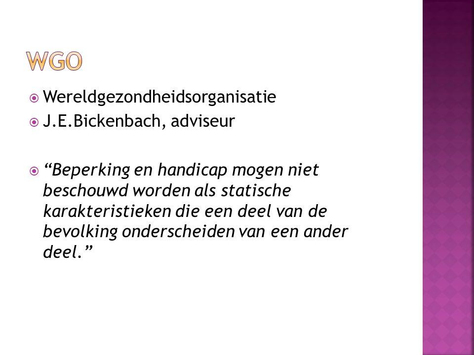 WGO Wereldgezondheidsorganisatie J.E.Bickenbach, adviseur