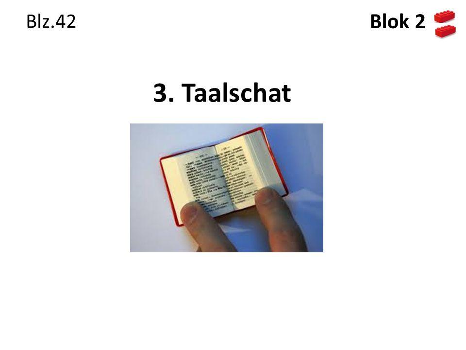 Blz.42 Blok 2 3. Taalschat