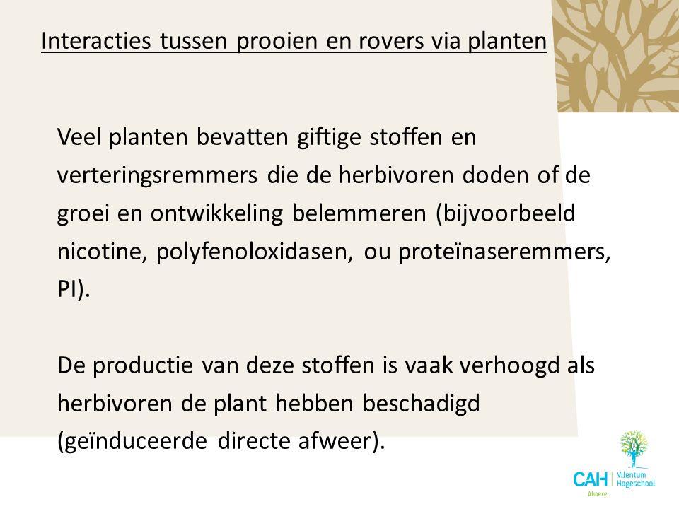 Interacties tussen prooien en rovers via planten