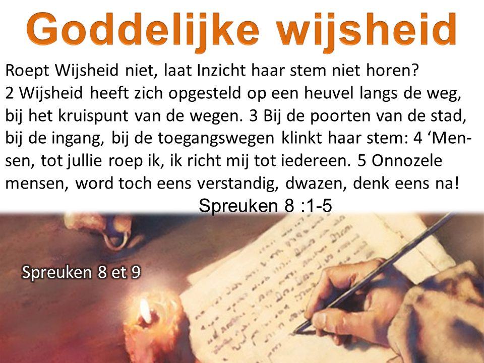 Goddelijke wijsheid Roept Wijsheid niet, laat Inzicht haar stem niet horen