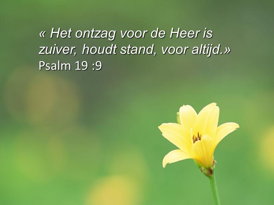 « Het ontzag voor de Heer is zuiver, houdt stand, voor altijd.»