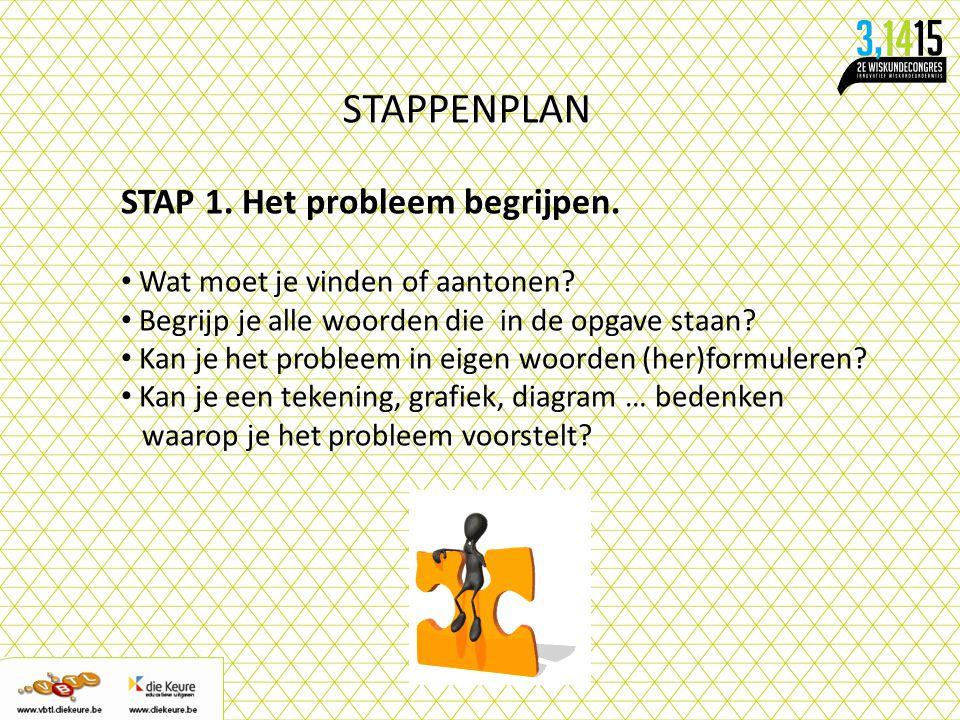 STAPPENPLAN STAP 1. Het probleem begrijpen.