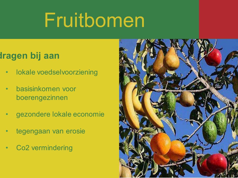 Fruitbomen Fruitbomen dragen bij aan lokale voedselvoorziening