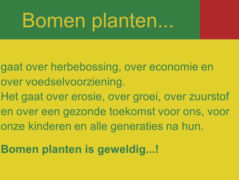 Bomen planten...