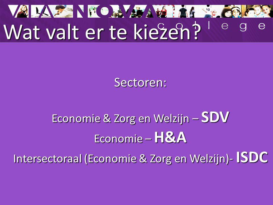 Wat valt er te kiezen Sectoren: Economie & Zorg en Welzijn – SDV