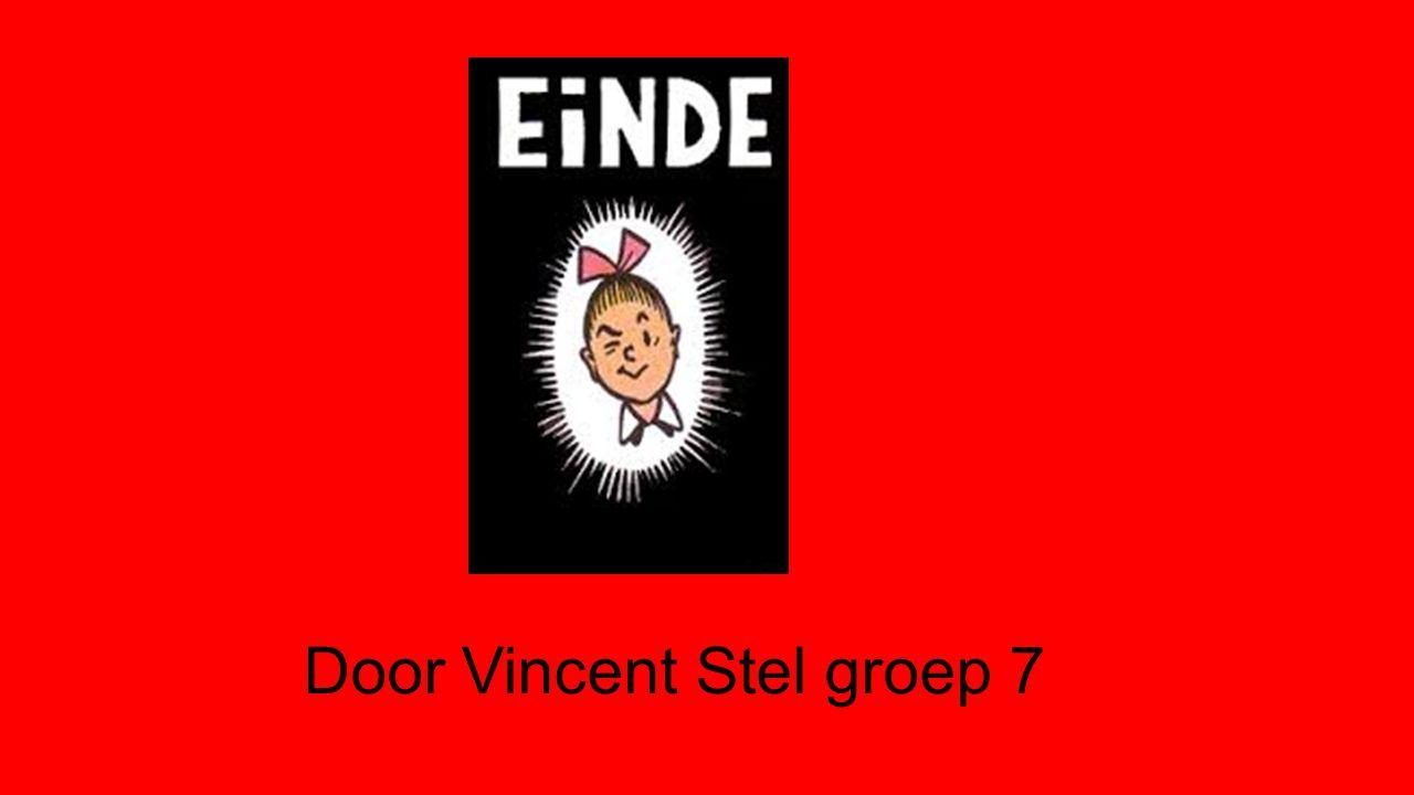 Door Vincent Stel groep 7