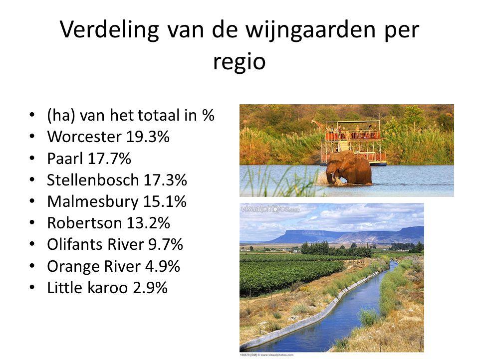 Verdeling van de wijngaarden per regio
