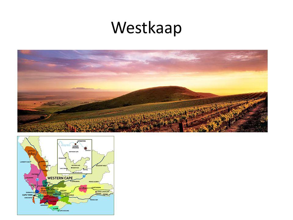 Westkaap