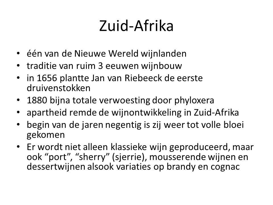 Zuid-Afrika één van de Nieuwe Wereld wijnlanden