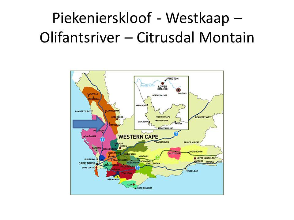 Piekenierskloof - Westkaap – Olifantsriver – Citrusdal Montain