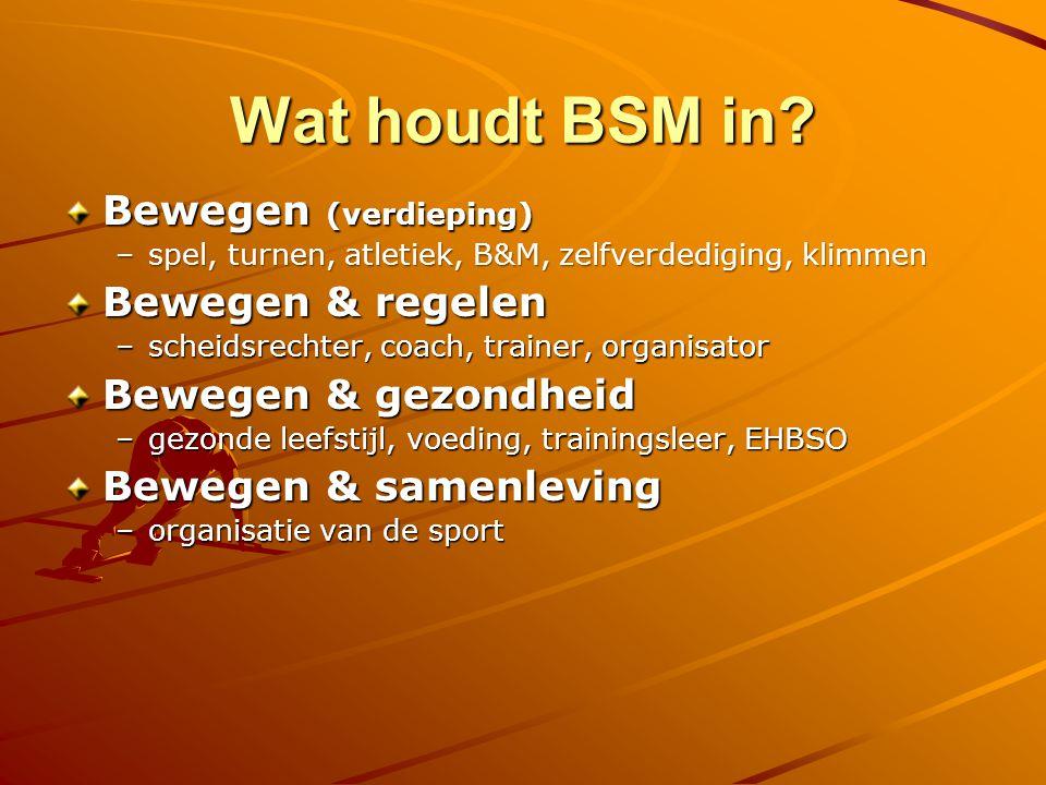 Wat houdt BSM in Bewegen (verdieping) Bewegen & regelen