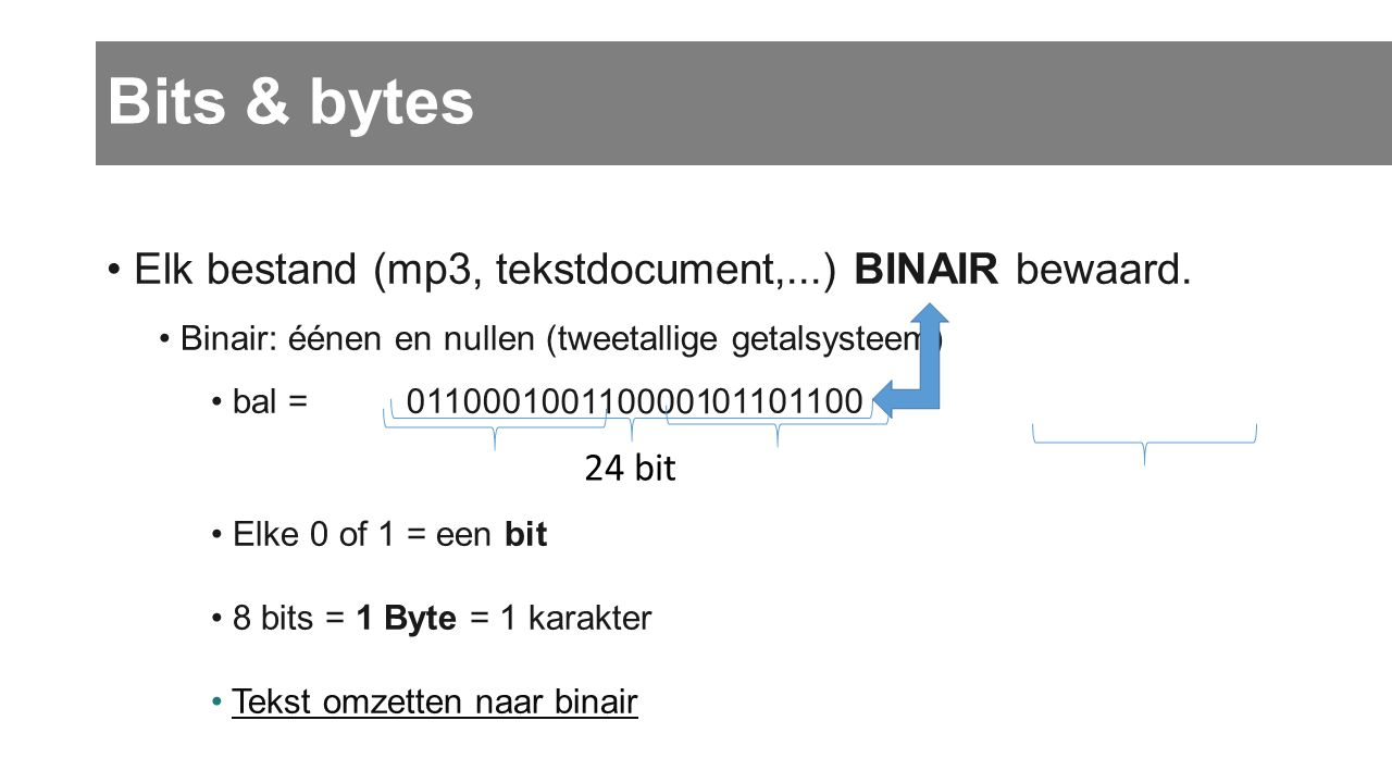 Bits & bytes Elk bestand (mp3, tekstdocument,...) BINAIR bewaard.