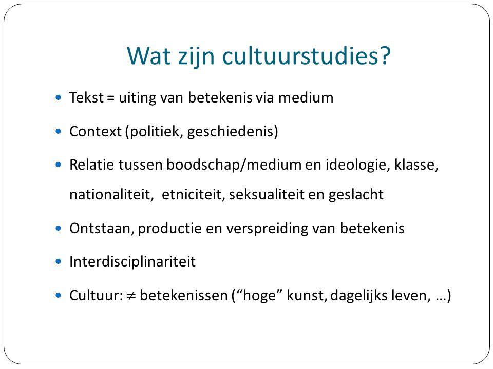 Wat zijn cultuurstudies