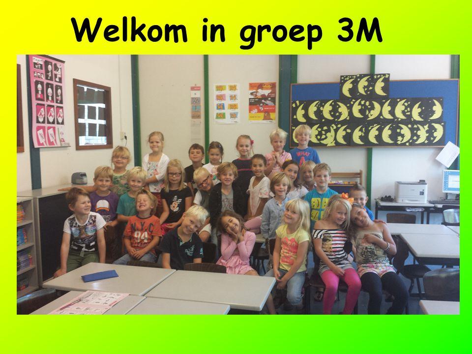 Welkom in groep 3M