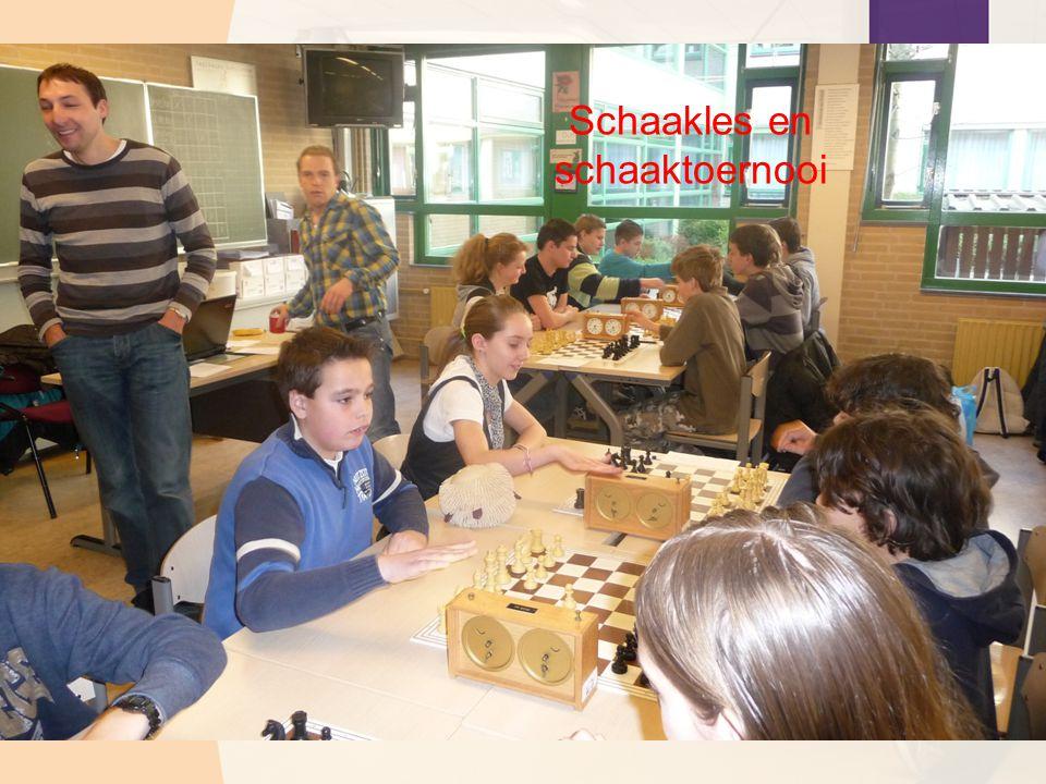 Schaakles en schaaktoernooi