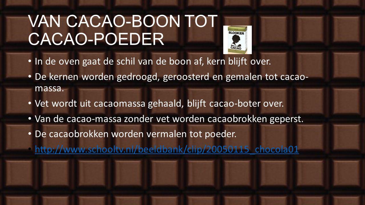 VAN CACAO-BOON TOT CACAO-POEDER