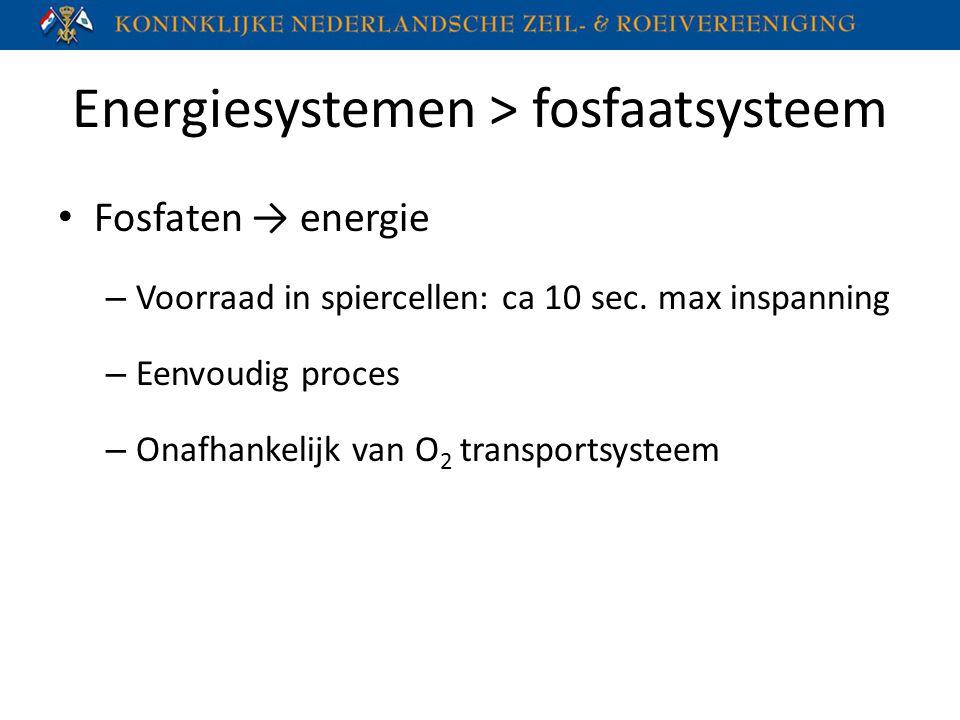 Energiesystemen > fosfaatsysteem