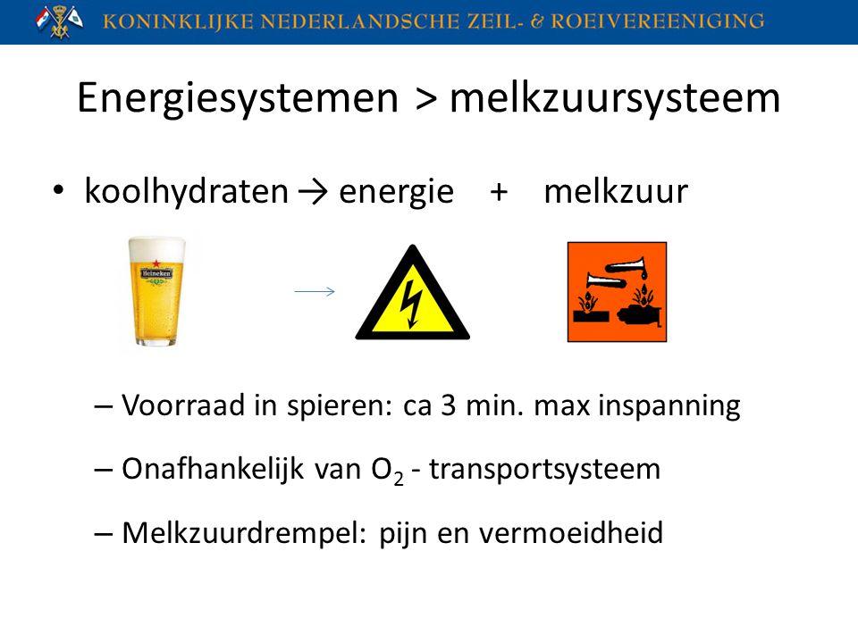 Energiesystemen > melkzuursysteem