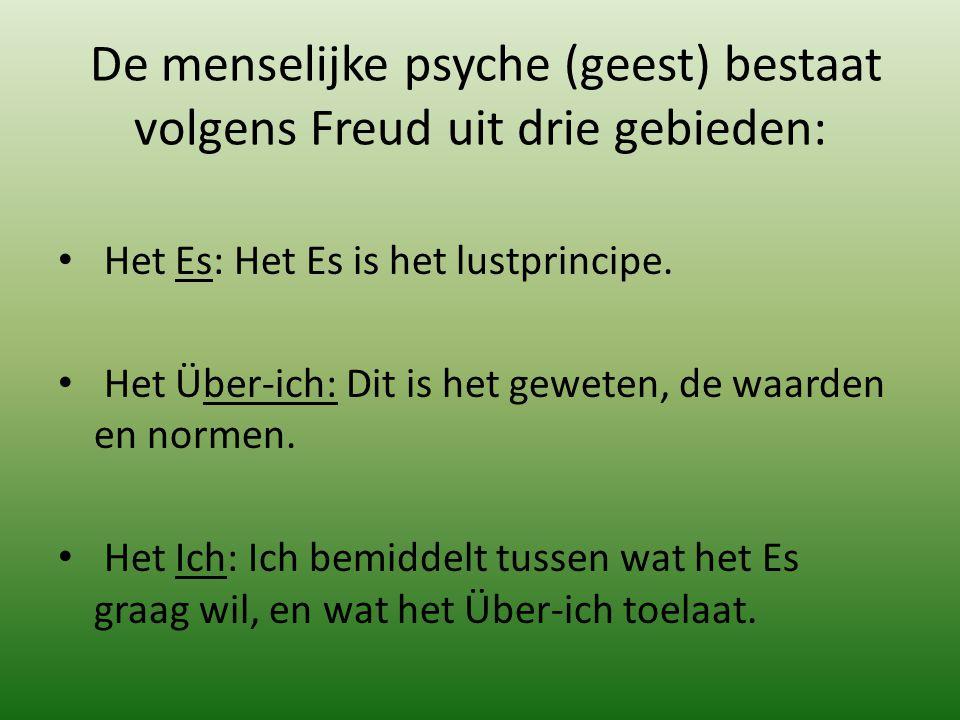 De menselijke psyche (geest) bestaat volgens Freud uit drie gebieden: