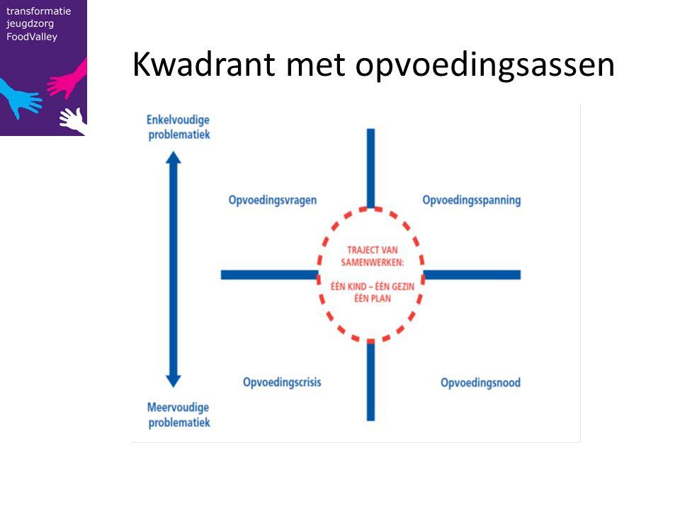 Kwadrant met opvoedingsassen