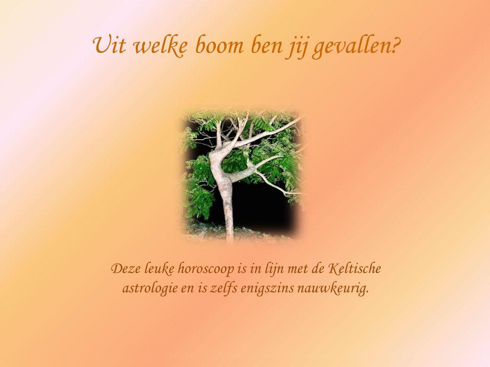 Uit welke boom ben jij gevallen