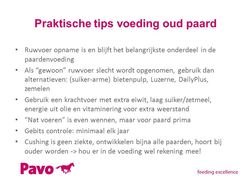 Praktische tips voeding oud paard