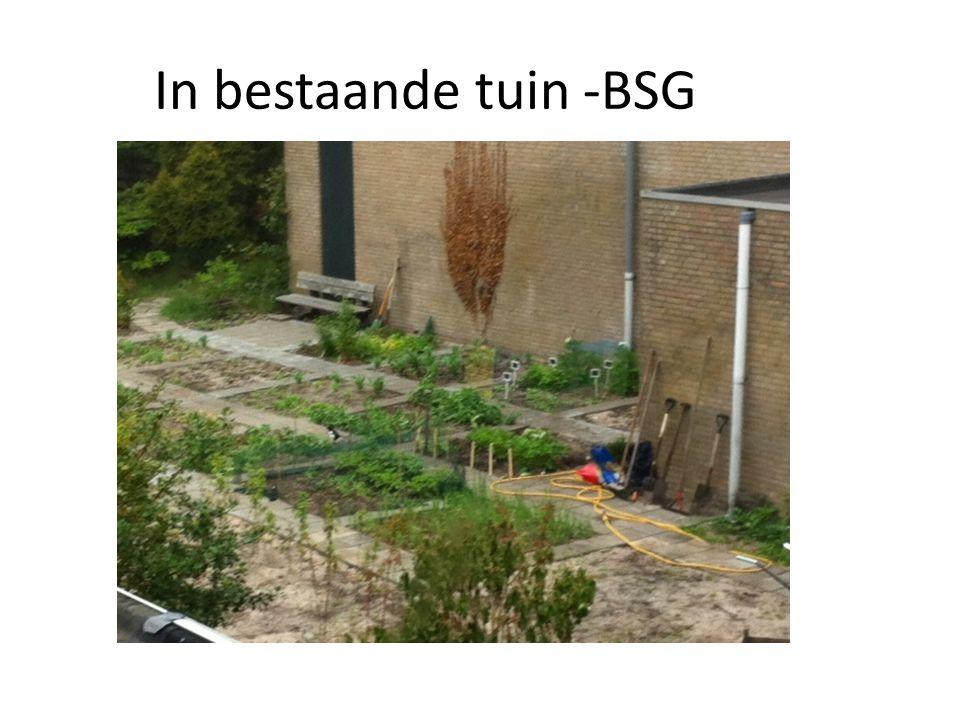 In bestaande tuin -BSG