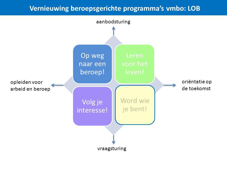 Vernieuwing beroepsgerichte programma's vmbo: LOB