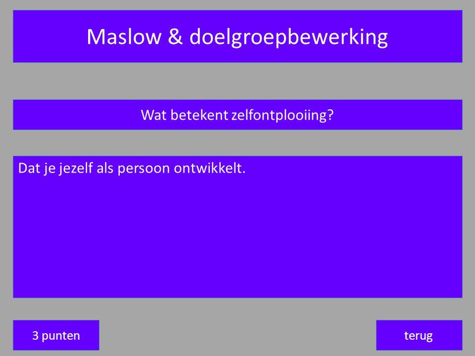 Maslow & doelgroepbewerking