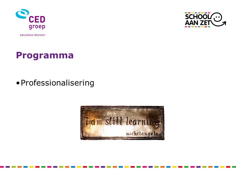 Programma Professionalisering