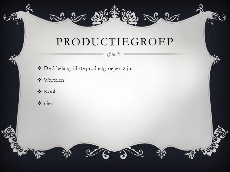 Productiegroep De 3 belangrijkste productgroepen zijn: Wortelen Kool
