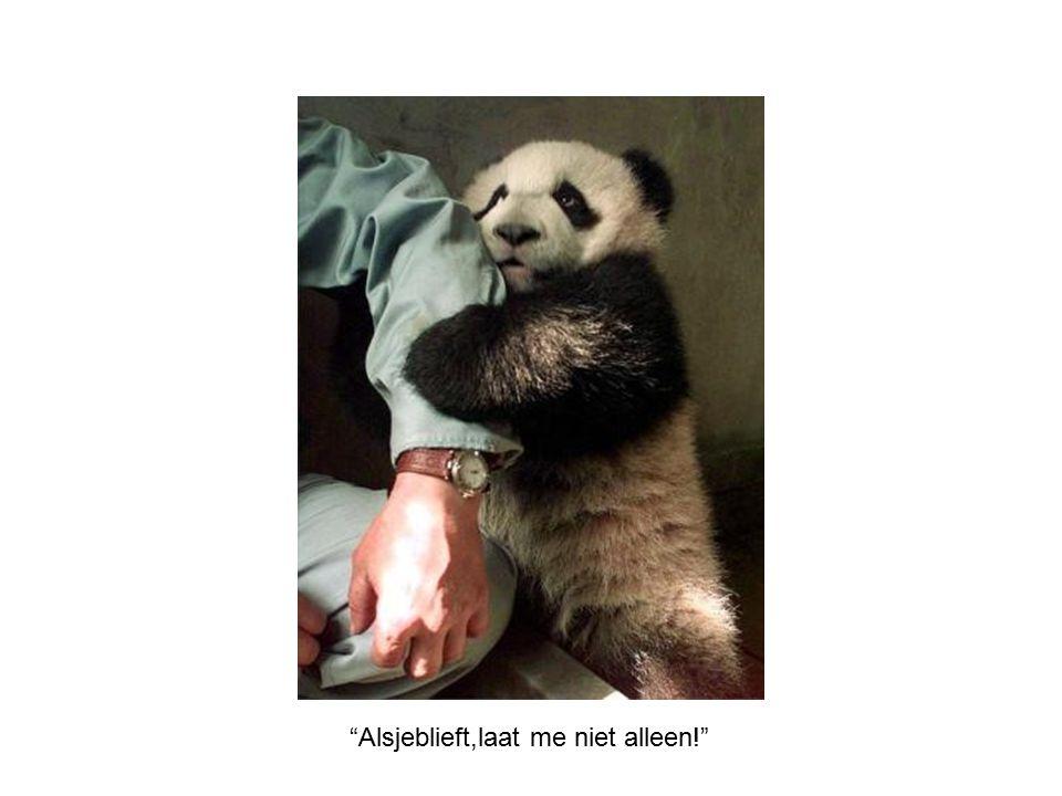 Alsjeblieft,laat me niet alleen!