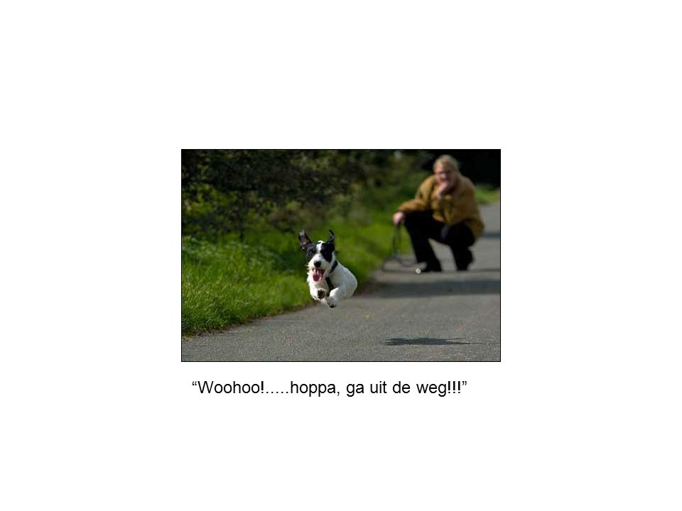 Woohoo!.....hoppa, ga uit de weg!!!