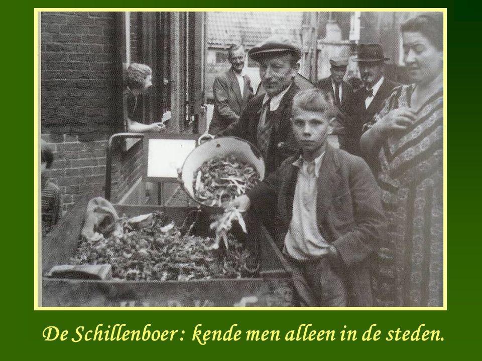 De Schillenboer : kende men alleen in de steden.