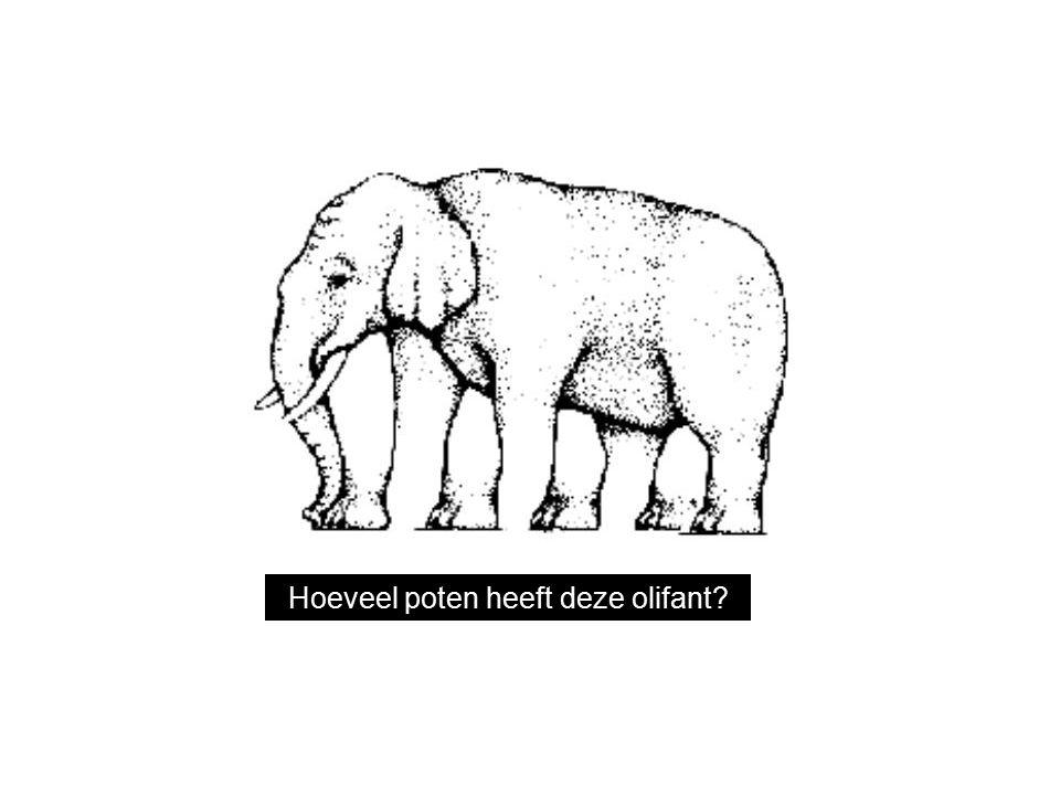 Hoeveel poten heeft deze olifant