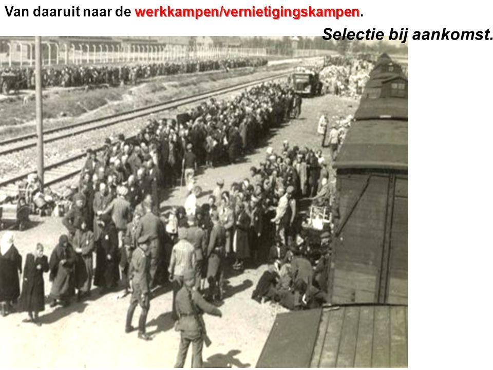Van daaruit naar de werkkampen/vernietigingskampen.