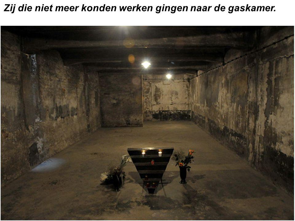 Zij die niet meer konden werken gingen naar de gaskamer.