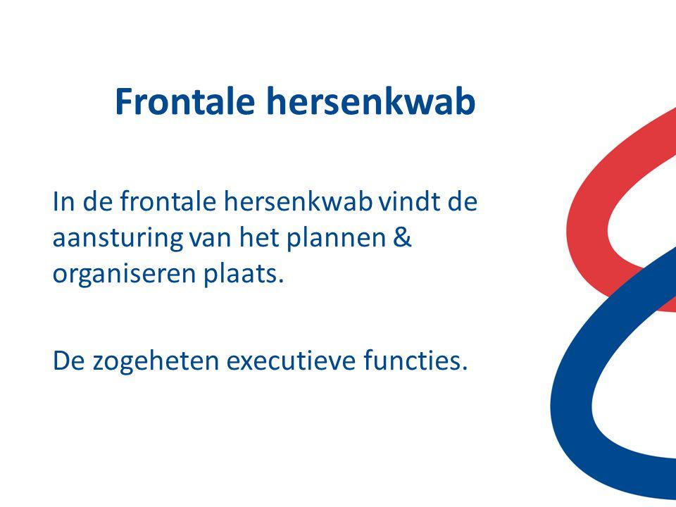 Frontale hersenkwab In de frontale hersenkwab vindt de aansturing van het plannen & organiseren plaats.