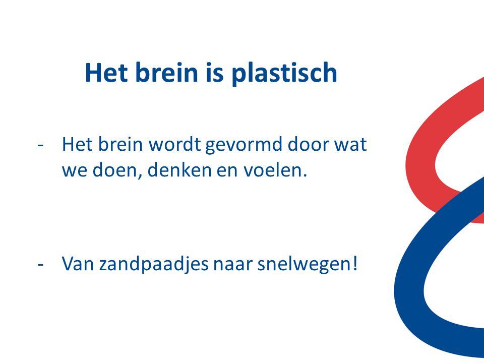 Het brein is plastisch Het brein wordt gevormd door wat we doen, denken en voelen.