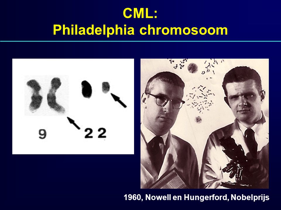 CML: Philadelphia chromosoom