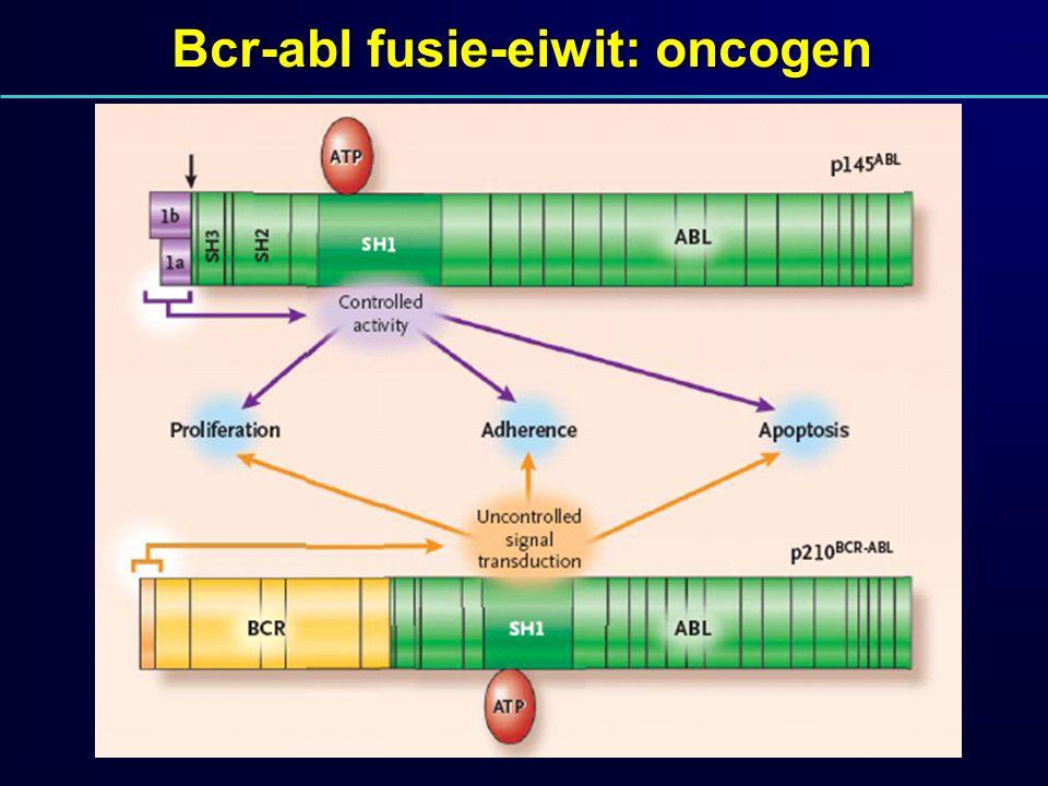 Bcr-abl fusie-eiwit: oncogen