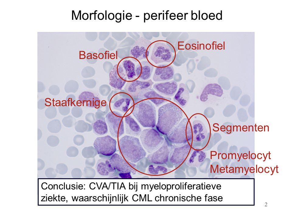 Morfologie - perifeer bloed