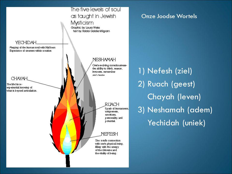 1) Nefesh (ziel) 2) Ruach (geest) Chayah (leven) 3) Neshamah (adem)