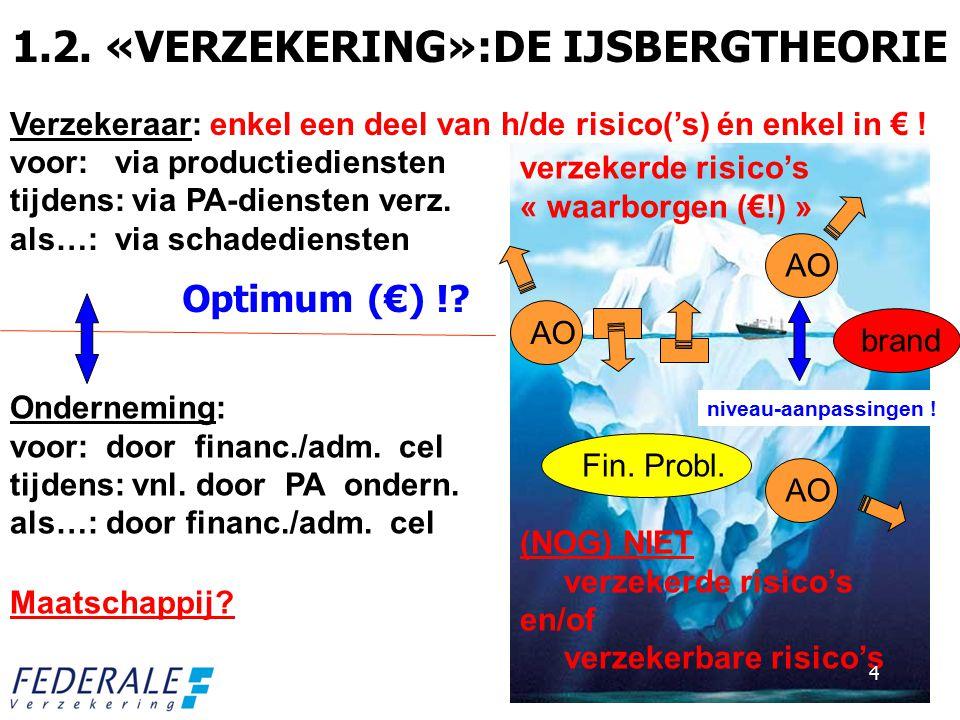 1.2. «VERZEKERING»:DE IJSBERGTHEORIE