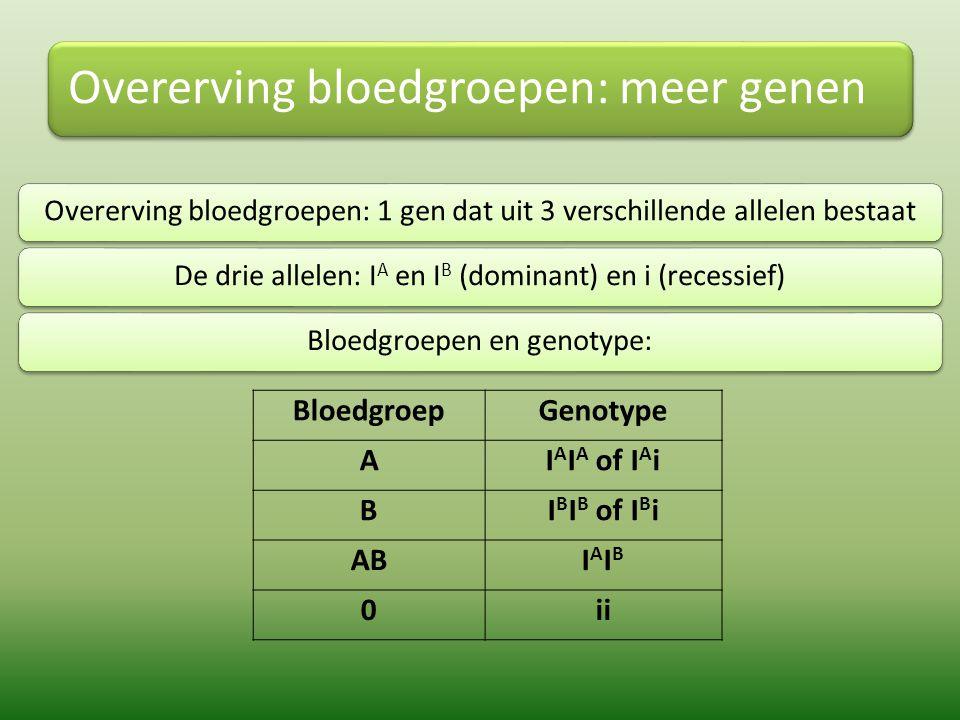 Overerving bloedgroepen: meer genen