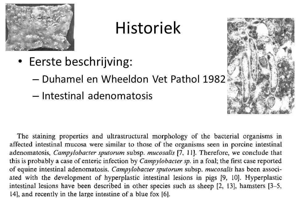 Historiek Eerste beschrijving: Duhamel en Wheeldon Vet Pathol 1982