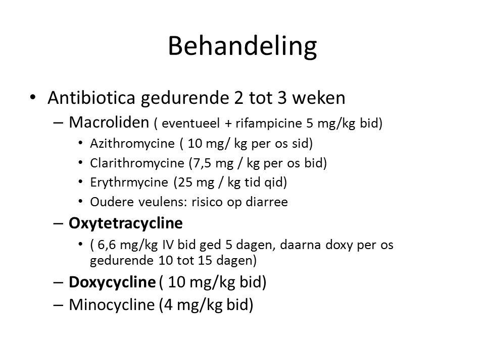 Behandeling Antibiotica gedurende 2 tot 3 weken