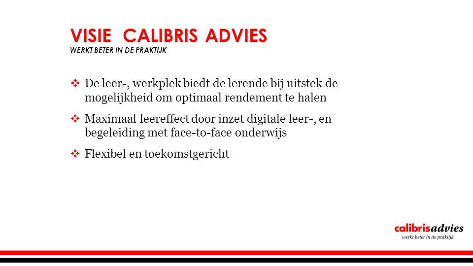 Visie Calibris advies Werkt beter in de praktijk