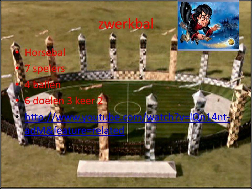 zwerkbal Horsebal 7 spelers 4 ballen 6 doelen 3 keer 2